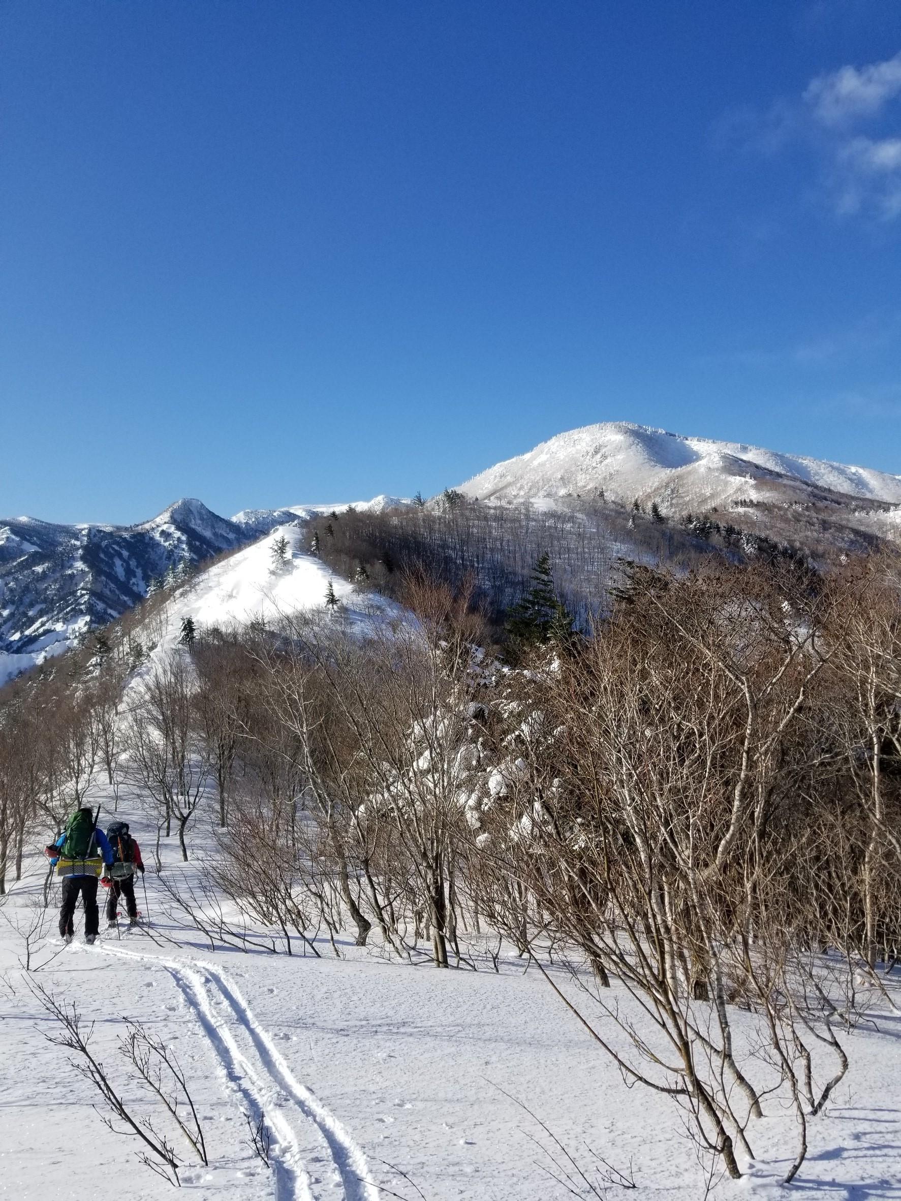 吾妻栂森調査w-ing 2019/1/12-13